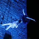 Circo Delicia - Enric Coromina - 19
