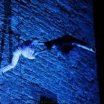 Circo Delicia - Enric Coromina - 21